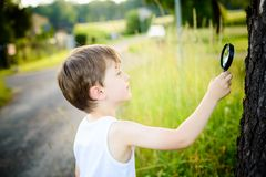 Little boy looks at a tree  through a magnifying glass Stock Photos