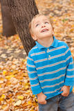 Little boy looks up. Royalty Free Stock Photo