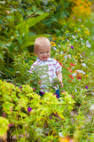 Little boy in a lush garden Stock Photo