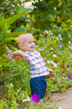 Little boy in a lush garden Stock Image