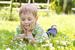 Little boy lying in clover flower field. Hands under the cheeks Sunny summer, spring day Royalty Free Stock Photo