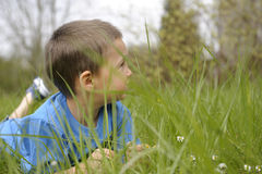 Little boy lying on his belly in grass Stock Photography