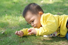 Little boy lying on the lawn Stock Photo