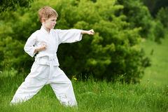 Little boy make karate exercises Stock Photo