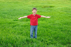 Little boy on meadow Stock Photo