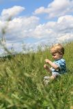Little boy on the meadow Royalty Free Stock Photo