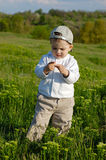 Little boy on meadow. Green grass, flowers Stock Photos