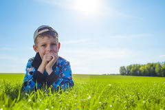 Little boy on meadow Stock Photography