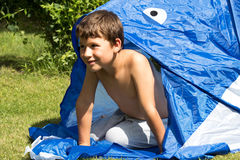 Little boy on a meadow. Little boy playing in a tent on a summer meadow Royalty Free Stock Image