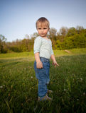Little boy in the meadow Royalty Free Stock Photography