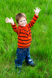 Little boy on meadow with raised hands Stock Image