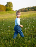 Little boy in the meadow Stock Photo