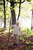 Little Boy med den stora pinnen som går i träna royaltyfri fotografi
