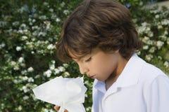 Little Boy med en förkylning Fotografering för Bildbyråer