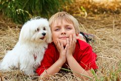 Little Boy med en hund Arkivfoto