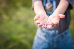 Little Boy mienia kwiat Zdjęcia Royalty Free
