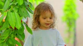 Little Boy mignon mangeant des cerises dans le jardin banque de vidéos