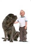 Little Boy mit großem Hund Stockfoto