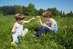 Little Boy montrant son pot d'A Butterfly In Glass de frère jumeau tout en se reposant dans une herbe chez Sunny Day Photographie stock