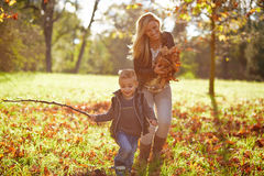 Little boy and mother playing together Stock Photography
