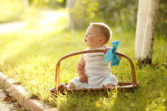 Little boy near the basket to nature Stock Photos