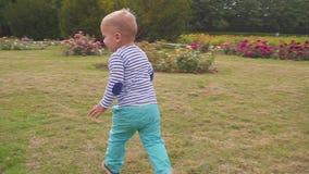 Little boy runs near the rose bush. Slow motion. Little boy near the rose bush stock video