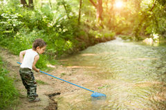 Little boy, net, river, summer, heat, fishing, naughty, funny, forest Stock Photo