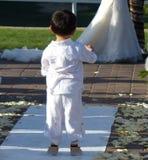 Little Boy observando pares do casamento Fotos de Stock