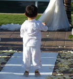 Little Boy Observing Wedding Couple from his point of view. A small boy looks at a family member getting married as he stands on the wedding march runner. Flower stock photos