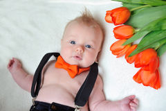 Little boy with an orange butterfly and a bouquet of flowers. Lies on the bed Royalty Free Stock Photography