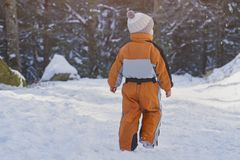 Little boy in an orange jumpsuit walking on snow-covered road in a coniferous forest. Winter sunny day. Back view.  royalty free stock images