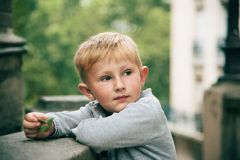 Little boy outdoor portrait stock photography