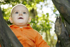 Little boy outdoors. Adorable little boy playing in a park royalty free stock images