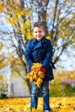 Little boy outdoors on an autumn day. Cute little boy with yellow falling leaves outdoors on a beautiful autumn day Royalty Free Stock Photo