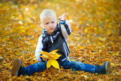 Little boy outdoors autumn. With yellow leaves Royalty Free Stock Images