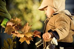 Little boy outdoors Royalty Free Stock Photography
