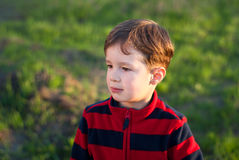 Little boy outdoors. A charming little boy outdoors in spring Royalty Free Stock Images