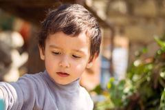 Little boy outdoors. Portrait of a pensive little boy outdoors Royalty Free Stock Photography