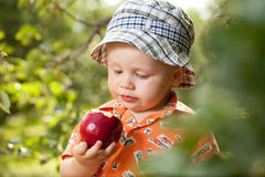 Little boy in panama with red apple Royalty Free Stock Photography