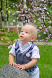 Little boy in the park Royalty Free Stock Image