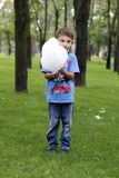 Little boy in the park. Eats cotton candy. stock photography