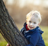 Little boy in park Royalty Free Stock Photo