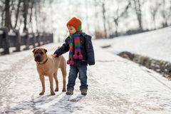 Little boy in the park with his dog friends Royalty Free Stock Photography