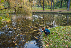 Little boy in park Stock Photography