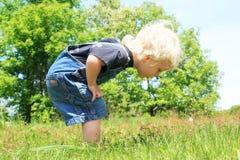Little Boy patrzeje Somehing w trawie zdjęcia stock