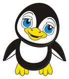 Little boy penguin Stock Photos