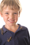 Little boy with pet lizards all over him Stock Photos