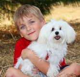 Little Boy with a Pet White Dog Stock Photo