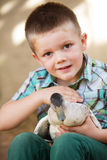 Little Boy Petting Duck Royalty Free Stock Image