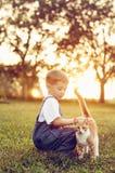 Little boy petting orange cat royalty free stock image